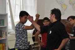 artes marciales (14)