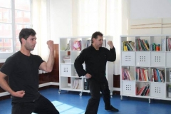 artes marciales (11)